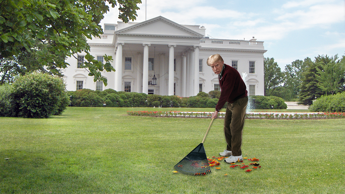 "President Trump made an attempt to model ""good forest maintenance"" by raking leaves on the White House lawn."